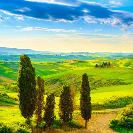 Toskana, ländlichen Sonnenuntergang Landschaft. Bauernhof, Zypressen Bäumen, grünen Wiese, Sonnenlicht und Wolken. Volterra, Italien, Europa. Standard-Bild