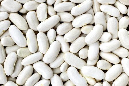 해군, haricot, 흰 완두콩, 흰 신장 또는 Cannellini 콩 질감 배경 또는 패턴. 원시 콩과 식물 식품.