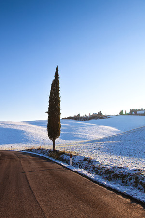 val d      orcia: Lonely cypress tree and snow in winter season. Rural landscape. Val d Orcia, Tuscany, Italy Stock Photo