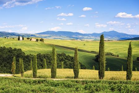 siena: Tuscany, italian rural landscape, cypress trees Vitaleta chapel on background, little church in Val d Orcia, Italy Stock Photo