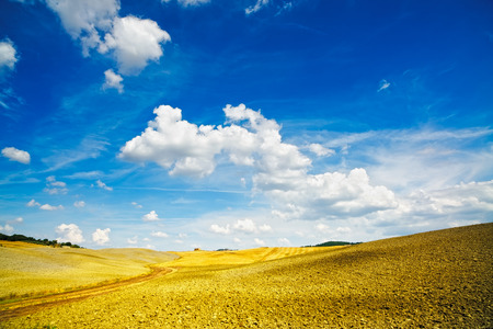 val d      orcia: Tuscany, rural landscape near Pienza. Siena, Val d Orcia, Italy, Europe Stock Photo
