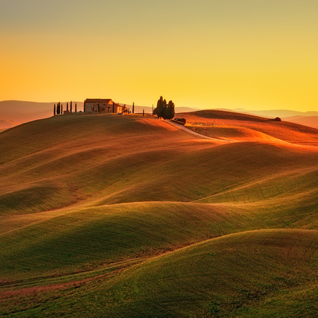 hill: Tuscany rural landscape in Crete Senesi land. Rolling hills countryside farm cypresses trees green field on warm sunset. Siena Italy Europe.