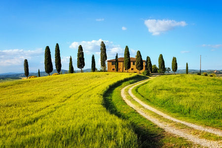 white clouds: Tuscany farmland and cypress trees and white road country landscape on sunset. Siena Italy Europe. Stock Photo