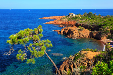 Esterel mediterranean tree, red rocks coast, beach and sea. French Riviera in Cote d Azur near Cannes, Provence, France, Europe. Banque d'images