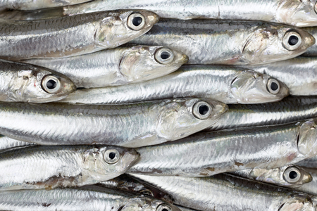 Fresh anchovies prepared seafood background texture or pattern. Raw food. Foto de archivo
