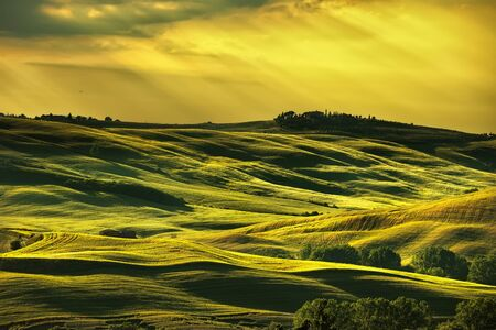farmlands: Tuscany spring, rolling hills on sunset. Rural landscape. Green fields and farmlands. Italy, Europe