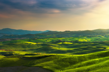 volterra: Tuscany spring, rolling hills on sunset. Rural landscape. Green fields and farmlands. Volterra Italy, Europe