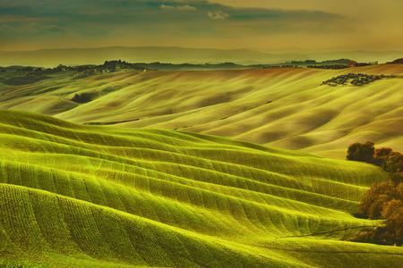 Toscane lente, glooiende heuvels op mistige zonsondergang. Landelijk landschap. Groene velden en landerijen. Italië, Europa