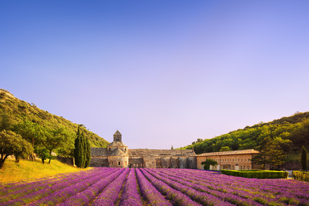 gordes: Abbey of Senanque and blooming rows lavender flowers on sunset. Gordes, Luberon, Vaucluse, Provence, France, Europe.