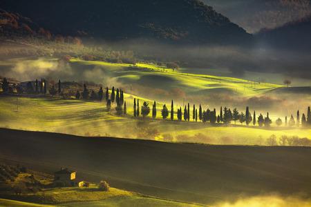 val: Tuscany foggy morning, farmland and cypress trees country landscape. Italy, Europe. Stock Photo