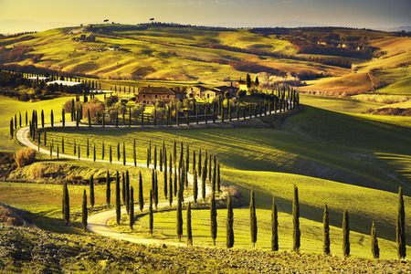 토스카나, 농촌 일몰 풍경. 시골 농장, 푸른 나무, 녹색 필드, 태양 빛과 구름입니다. 이탈리아, 유럽.