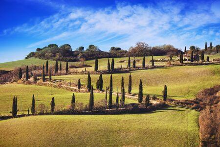 monticchiello: Cypress trees scenic road. Siena, Tuscany, Italy. Stock Photo