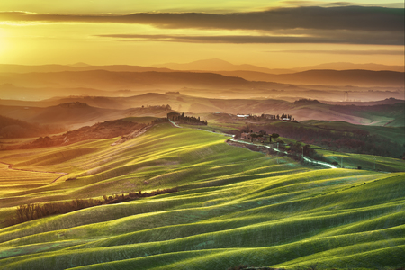 green fields: Tuscany spring, rolling hills on misty sunset. Rural landscape. Green fields and farmlands. Italy, Europe