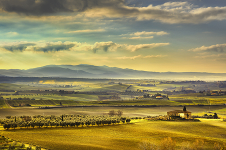 green fields: Tuscany Maremma foggy morning, farmland and green fields country landscape. Italy, Europe. Stock Photo