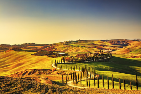 tuscan: Tuscany, Crete Senesi rural sunset landscape. Countryside farm, cypresses trees, green field, sun light and cloud. Italy, Europe. Stock Photo
