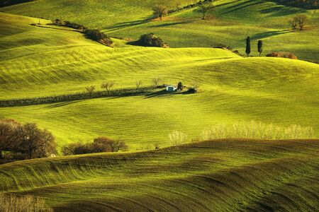 farmlands: Tuscany spring, rolling hills on misty sunset. Rural landscape. Green fields and farmlands. Italy, Europe