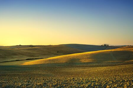 Tuscany spring, rolling hills on sunset. Rural landscape. Green fields, lonely olive tree and farmlands. Volterra Italy, Europe Stock Photo