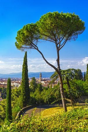 firenze: Florence or Firenze Palazzo Vecchio, trees,  aerial cityscape from a public garden. Tuscany, Italy Europe
