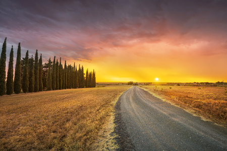 Sunset landscape in bad weather. Rural road, cypress trees. green field, sun light and clouds. Maremma, Tuscany, Italy Europe