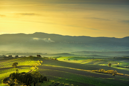 Tuscany countryside misty panorama, rolling hills and green fields on sunset. Pisa Italy, Europe