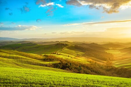 Tuscany misty panorama, rolling hills, fields, meadow and trees at sunset. Italy, Europe