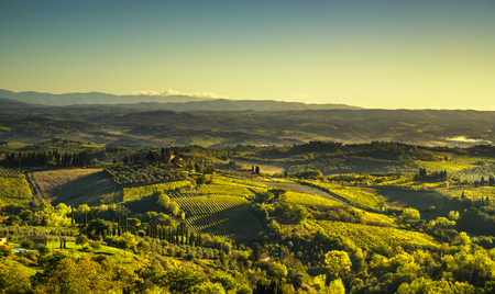 Panoramic view of countryside and vineyards from San Gimignano on sunrise. Tuscany, Italy, Europe.