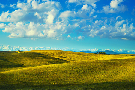 Tuscany countryside panorama, rolling hills and fields on sunset. Pisa Italy, Europe
