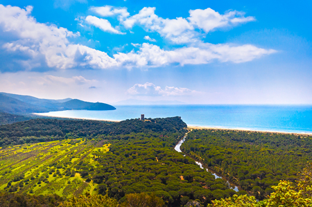 Panoramic view of Maremma Regional Park also known as Uccellina Park. Tower, forest and sea coast. Tuscany, Italy Europe.
