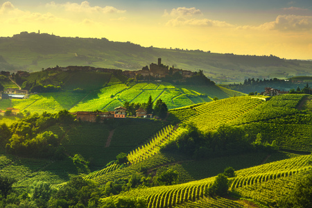 Langhe Weinberge Sonnenuntergang Panorama, Castiglione Falletto und La Morra, Piemont, Norditalien Europa.