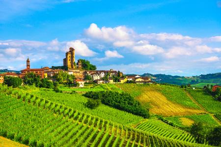 Langhe vineyards sunset panorama, Serralunga d Alba,  Piedmont, Northern Italy Europe. Foto de archivo - 116560628