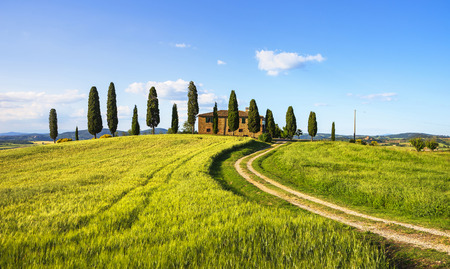 PIENZA, TUSCANY  ITALY - May 29, 2015: Iconic farmland I Cipressini, italian cypress trees and rural white road in spring. Located in Siena countryside.