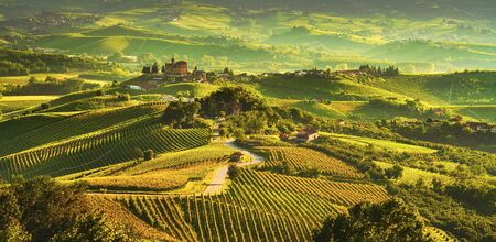 Langhe vineyards sunset panorama, Grinzane Cavour, , Piedmont, Northern Italy Europe. 免版税图像