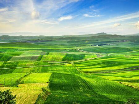 Apulia countryside view, rolling hills and green fields landscape. Poggiorsini, Bari, Italy Europe