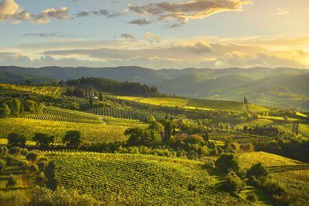 Panzano im Chianti-Weinberg und Panorama bei Sonnenuntergang im Herbst. Toskana, Italien Europa.