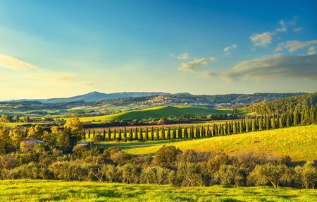 Sunset landscape in Maremma countryside. Rolling hills and cypress trees. Casale Marittimo. Tuscany, Italy, Europe