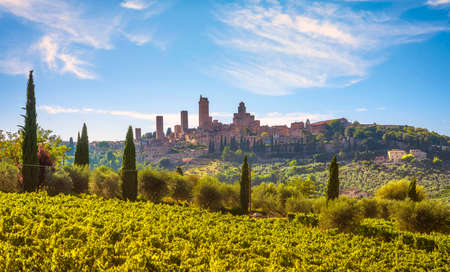 San Gimignano medieval town towers skyline and vineyards landscape panorama. Tuscany, Italy, Europe.