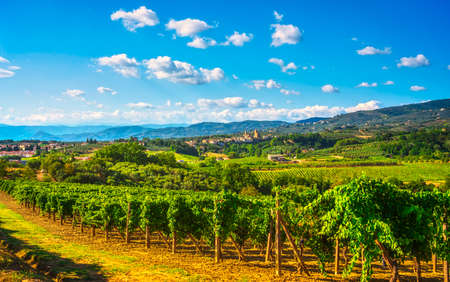 Vinci, sangiovese vineyards and village on background. Chianti production area, Florence, Tuscany Italy Europe.