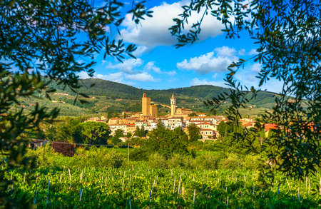 Vinci, Leonardo birthplace, village, vineyard and olive trees. Florence, Tuscany Italy Europe.