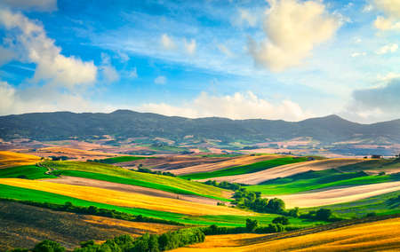 Tuscany countryside panorama, rolling hills and green fields at sunset. Santa Luce, Pisa Italy, Europe