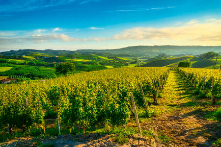 Langhe vineyards sunset panorama, Grinzane Cavour and La Marra,  Piedmont, Northern Italy Europe.