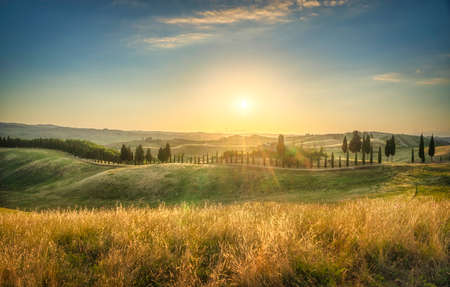 Certaldo canonica park at sunset. Rolling hills landscape and cypress tree row. Florence, Tuscany, Italy 스톡 콘텐츠