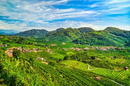 Prosecco Hills, vineyards panoramic landscape. Valdobbiadene, Treviso, Veneto, Italy, Europe.