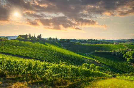 Panoramic view of countryside chianti and vernaccia vineyards. San Gimignano at sunset. Tuscany, Italy, Europe.
