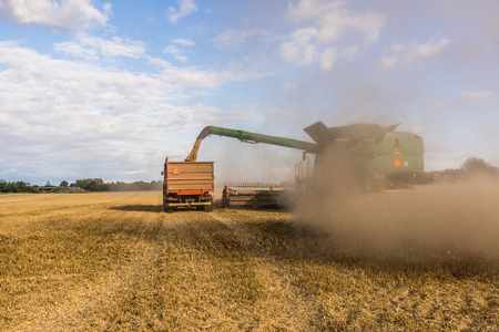 Big combine at a yellow field, harvesting in Borkop, Denmark , August 27, 2017 Stock Photo