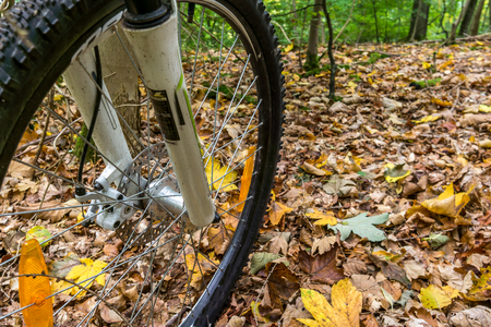 The front wheel of a mountain bike with disc brakes and suspension, rolling over yellow leaves.  Denmark, October 16, 2017