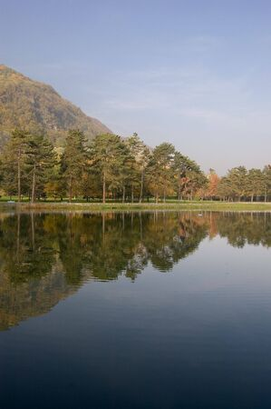 trees reflect in the lake Stock Photo - 5901560