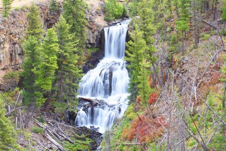 undine: Undine Falls in Yellowstone National Park with early fall colors