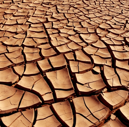 Dry and cracked earth in the Namib Desert in Namibia photo