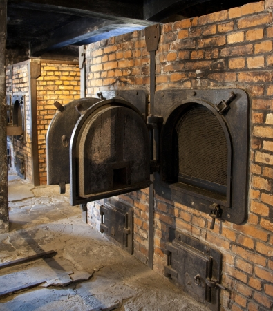nazis: Cremation ovens in Auschwitz concentration camp, where up to three million people were murdered by the Nazis  - 2.5 million gassed, and 500,000 from disease and starvation.