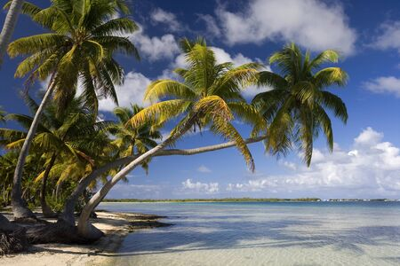 Tropical paradise of Aitutaki Lagoon in the Cook Islands in the South Pacific Ocean  photo